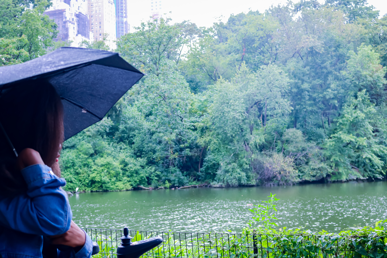 under the rain in cenral park